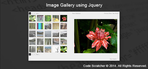 Image Gallery using Jquery