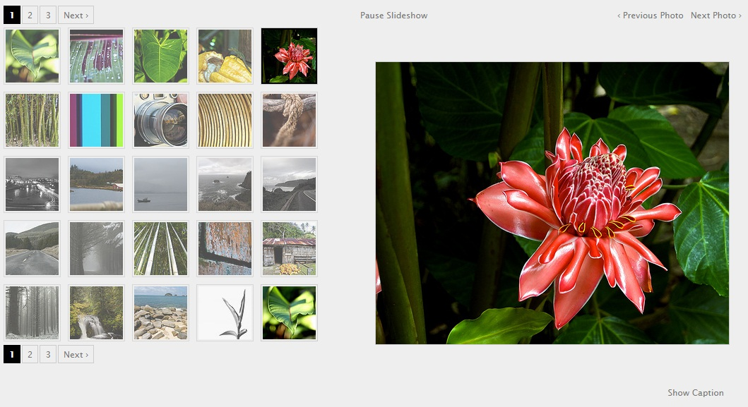 Image Gallery using Jquery - Output