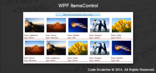 WPF ItemsControl - CODE SCRATCHER